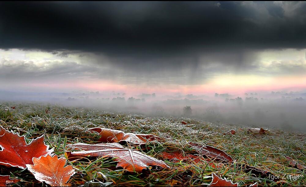 At the verge of winter by Igor Zenin