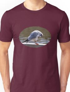 Preening Time - Black-headed Gull Unisex T-Shirt