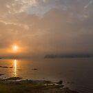 One misty moisty morning by Bonnie T.  Barry