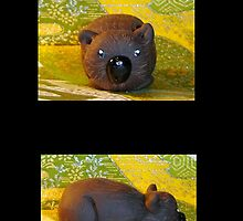 Wombat by ScarletDragnfly