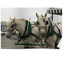Horse Drawn Carriage Poster