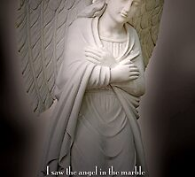Angel in the marble . . . by Bonnie T.  Barry