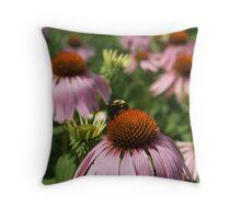 Bumblebee on Echinacea Throw Pillow