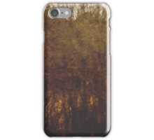 Signal for an elsebound train iPhone Case/Skin