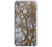 Twisted Willow iPhone Case/Skin