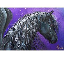 Night Pegasus Photographic Print