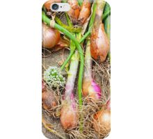 Just Onions iPhone Case/Skin
