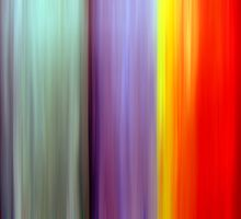Color Spectrum by Ruth Palmer