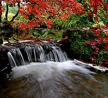 """Autumn's Water Fall in Red"" by Bradley Shawn  Rabon"