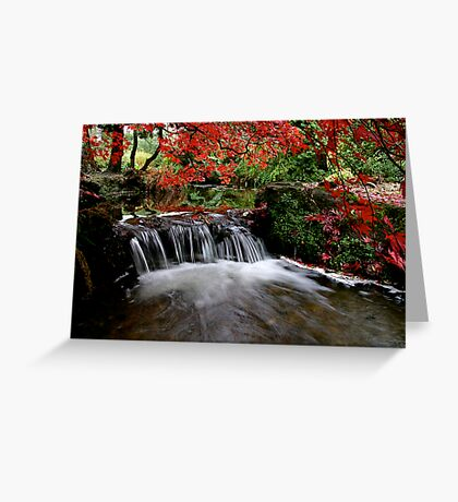 """Autumn's Water Fall in Red"" Greeting Card"