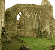 Dominican Priory in Ireland by Osbren