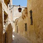 The Silent Street of Mdina  by Stanislav Sokolov