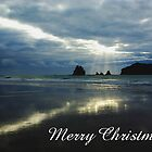 Whangamata, Merry Christmas by Steven Weeks