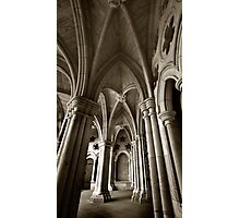 The 8 Stone Cinquefoils Photographic Print