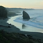 Dawn - Meyers Creek Beach - Oregon by Harry Snowden