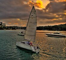 Tack Into The Light - Newport , Australia - The HDR Series by Philip Johnson