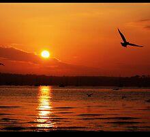 Brownsea sunset by romeo83