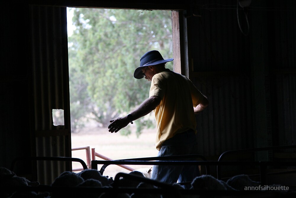 Shearing shed by annofsilhouette