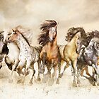 Galloping Horses - The Magnificent Seven by Shanina Conway