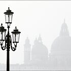 Venice by George Parapadakis (monocotylidono)