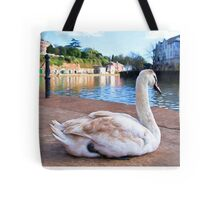 Young Adult Swan - Impressions Tote Bag