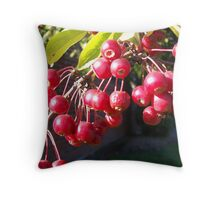 Little Red Apples Throw Pillow