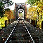 Railway Bridge Over The Umpqua River by Chuck Gardner