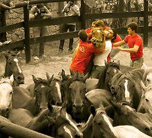 Rapa das Bestas by contremo
