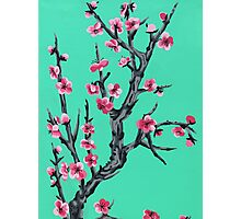 ARIZONA SAKURA Photographic Print