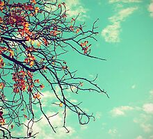 Ode to Autumn by Shilpa Shenoy