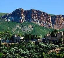 A Perched Vilage in Alpes-de-Haute-Provence, France by atomov