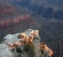 First Light at the Grand Canyon by rhaworth
