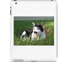 Felix The Moustache Cat - In grass iPad Case/Skin