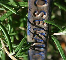 Rosemary by SpringLupin