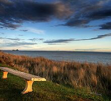 Lonely bench - March by Louis-Thibaud Chambon
