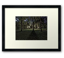 Long Shadows of Summer Framed Print