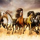 Magnificent Seven Galloping Horses Full Color  by Shanina Conway