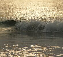 Sparkling Sea, Hunting Island Sunrise by Anna Lisa Yoder