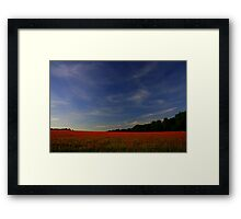Poppy Freedom (Remembrance Day) Framed Print