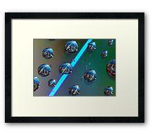 Domestic Drops Framed Print