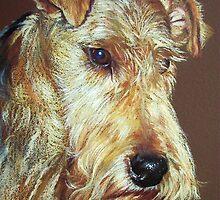 Terrier by Elena Kolotusha