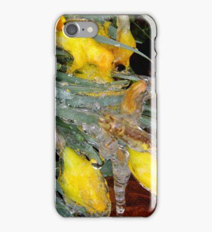 Encased In Ice iPhone Case/Skin