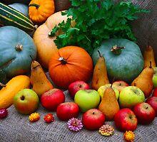 Harvest Festival of Colours by Mark Wilson