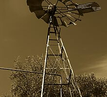 A windmill, at winery somewhere..... by Andrew Clinkaberry