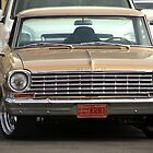 1964 Chevy Nova by down23