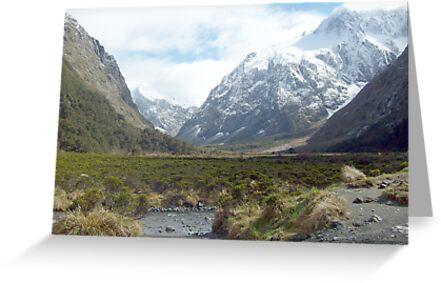 Monkey Creek, Milford Road, New Zealand by meatpie