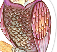 Magical wise owl Sticker