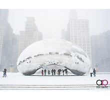 Bean Covered in Snow Photographic Print