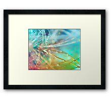 Technicolor Cactus.  Framed Print