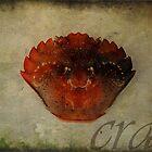 Crab by Melanie  Dooley